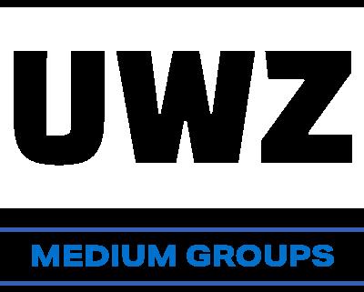 Medium Group (10-29 players)
